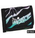 Chiemsee Wallet