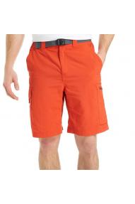 Columbia Silver Ridge Cargo Short pants