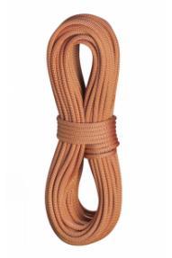 Single climbing rope Edelrid Heron Pro Dry 9,8 60m