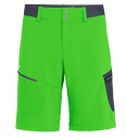 Men's shorts Salewa Pedroc Cargo 2 DST