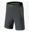 Men's shorts Dynafit Transalper Light Dynastretch