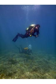 Individualni početni tečaj ronjenja PADI