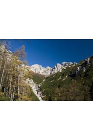 Grebensko prečenje Zeleniških špic v Kamniških Alpah